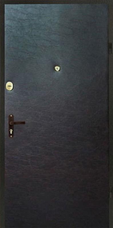 фото двери спереди